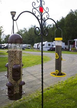 Camping Dégelis