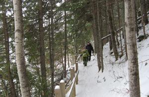 Randonnée au Belvedère Les Pins
